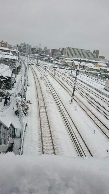 20160118_雪